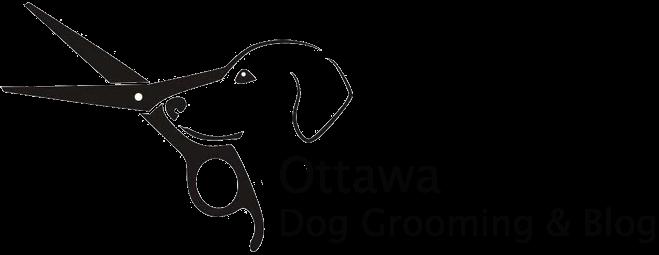 Ottawa Dog Grooming & Blog