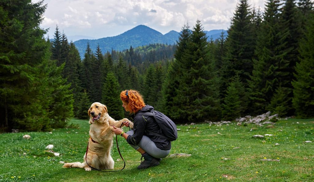 Fun Places for You and Your Dog in Ottawa